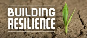 BuildingResilience2